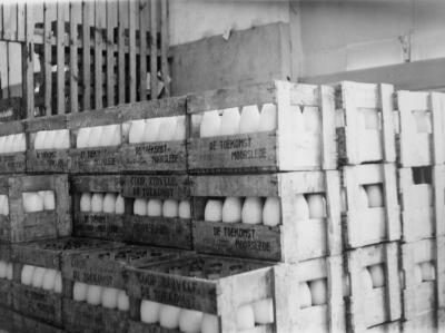 Opslagplaats consumptiemelk zuivelbedrijf De Toekomst, Moorslede, 1948-1966