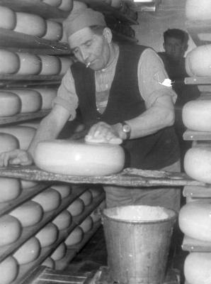 Jules Delanote en Valère Dedier tussen de kaasbollen, zuivelbedrijf De Toekomst, 1948-1966