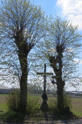 Kruis tussen bomen, Gits