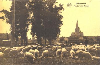 Schaapherder met kudde, Dadizele