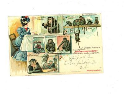 Officiële postkaart van het Barnum en Bailey circus met apen